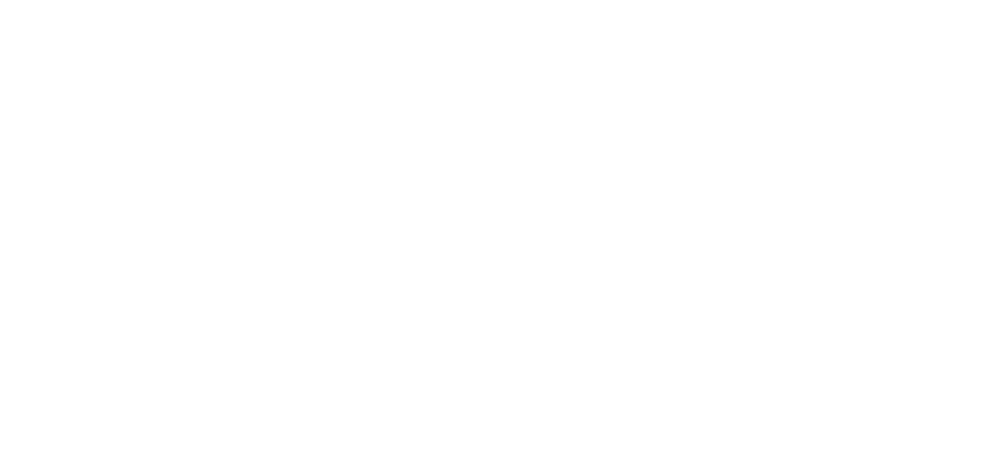 Health Entitlement Logo